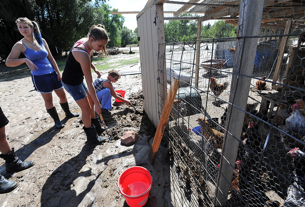 . Amie Burton, right, and her daughter Rylee Burton, 13, center, dig mud away from the door to a chicken house Monday, September 16, 2013, so they can feed a nieghbor\'s chickens on Glade Road. They were wanted to make sure the animals were fed and watered after their owners were evacuated from the flood. (Photo by Jenny Sparks/Loveland Reporter-Herald)